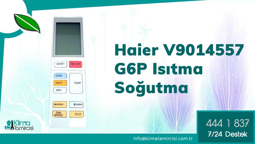 Haier V9014557 G6P 6D Isıtma Soğutma